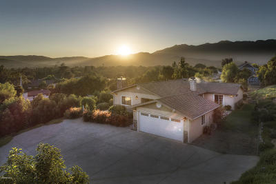 Ojai Single Family Home For Sale: 920 Loma Drive