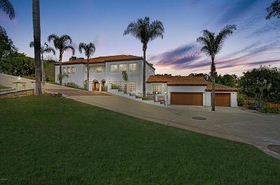 Ventura Single Family Home For Sale: 486 Marymount Court