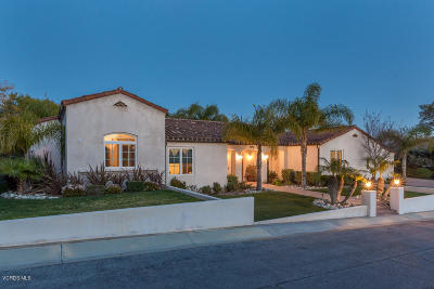 Camarillo Single Family Home For Sale: 670 Mesa Drive