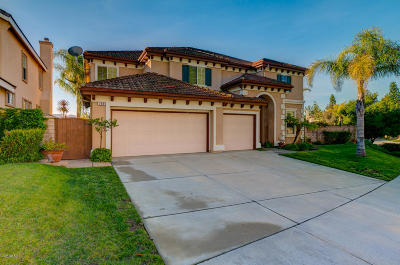 Simi Valley Single Family Home For Sale: 768 Eisenhower Way