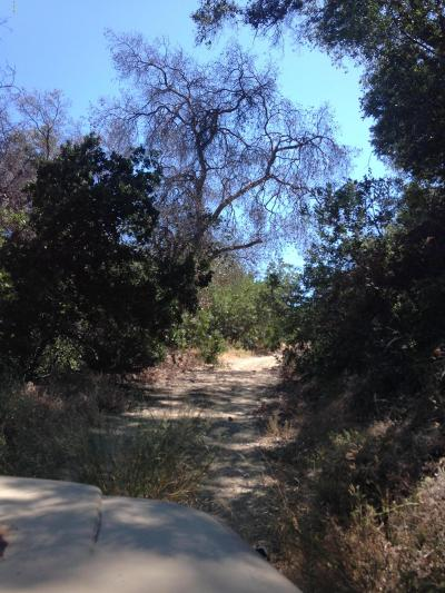 Ventura County Residential Lots & Land For Sale: Sulphur Mtn Shangri - La Ojai