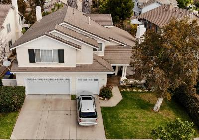 Oxnard Single Family Home For Sale: 831 Rosebud Drive
