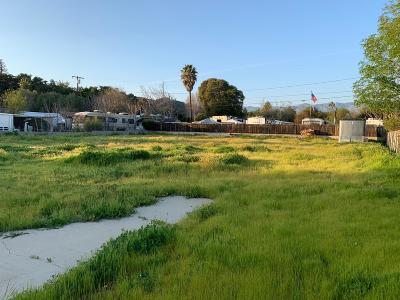 Ventura County Residential Lots & Land For Sale: 191 Grapevine Road