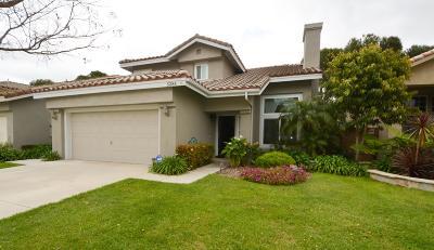 Camarillo Rental For Rent: 5284 Buena Mesa Court