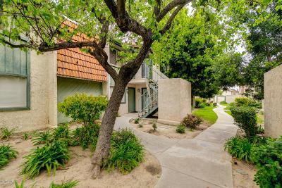 Santa Paula  Condo/Townhouse Active Under Contract: 102 E Ventura Street #E