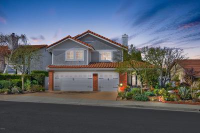 Thousand Oaks Single Family Home For Sale: 3239 Montagne Way