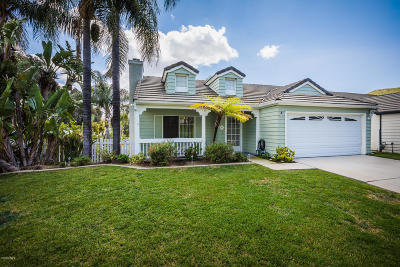 Simi Valley Single Family Home For Sale: 486 Algonquin Drive