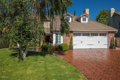 Agoura Hills Single Family Home For Sale: 29018 Tackaberry Court