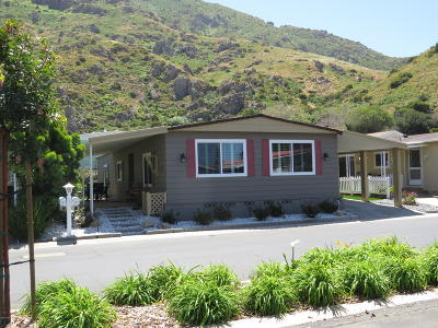 Camarillo Mobile Home For Sale: 32 Irena Avenue #131