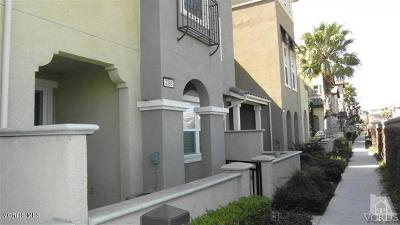 Camarillo Rental For Rent: 3389 Shadetree Way