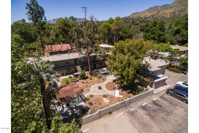 Ojai Multi Family Home For Sale: 614 Grand Avenue #12