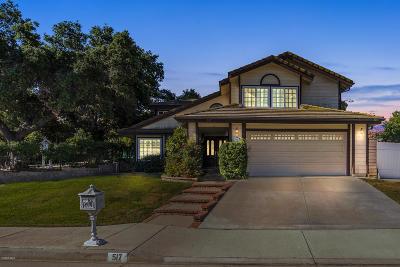 Newbury Park Single Family Home For Sale: 517 Canyon Vista Drive