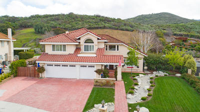 Newbury Park Single Family Home For Sale: 1123 Antelope Place