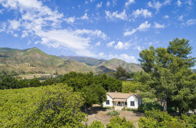 Ojai Single Family Home For Sale: 1340 McNell Road