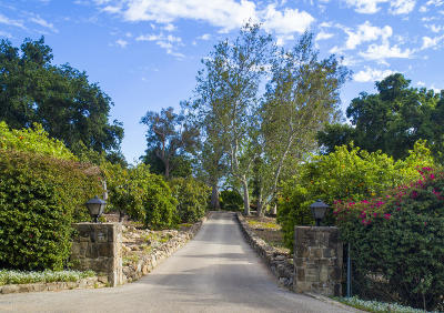 Ojai Single Family Home For Sale: 4106 Thacher Road