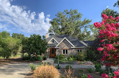 Ojai Single Family Home For Sale: 1010 El Toro Road