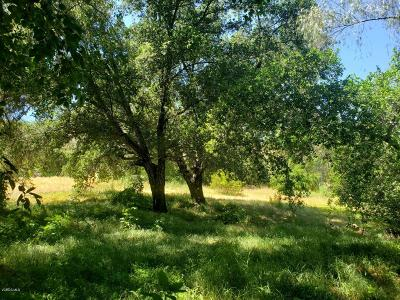 Ventura County Residential Lots & Land For Sale: 1044 Gaston Road
