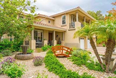Thousand Oaks Single Family Home For Sale: 2862 Country Vista Street