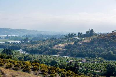 Ventura County Residential Lots & Land For Sale: 6261 Ridgecrest Lane