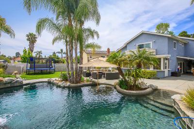 Thousand Oaks Single Family Home For Sale: 1940 Oberlin Avenue