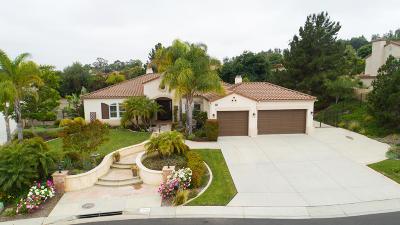 Camarillo Single Family Home For Sale: 1743 Cervato Drive
