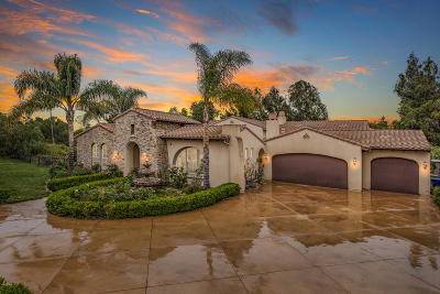 Camarillo Single Family Home For Sale: 363 Valley Vista Drive