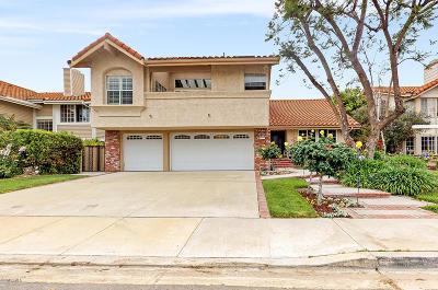 Thousand Oaks Single Family Home For Sale: 3367 Montagne Way