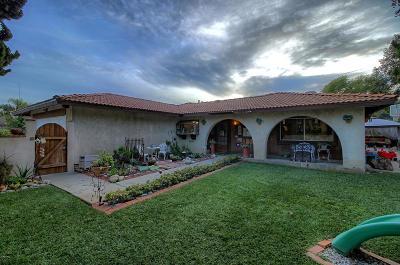 Ventura Single Family Home For Sale: 1701 Ramelli Avenue