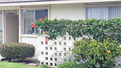 Ventura County Single Family Home For Sale: 113 E Garden Green