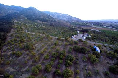 Ventura County Residential Lots & Land For Sale: 0000 S Mountain Road