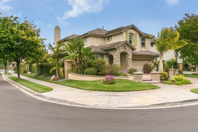 Camarillo Single Family Home For Sale: 3805 Hedge Lane