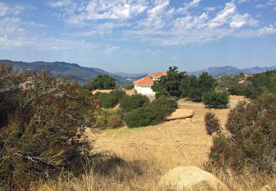 Santa Paula  Single Family Home For Sale: 12599 Koenigstein Road