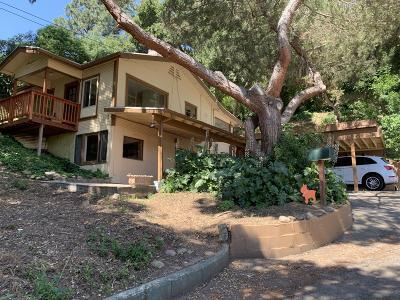 Ventura Single Family Home For Sale: 398 Skyhigh Drive