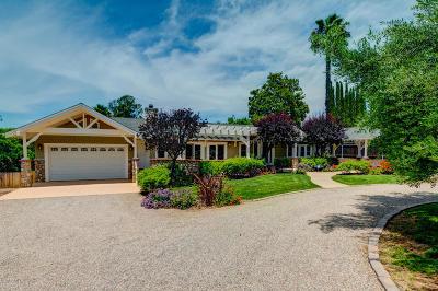 Ojai Single Family Home For Sale: 1049 Loma Drive