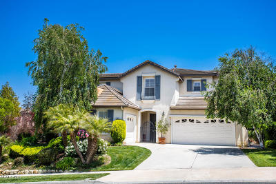 Newbury Park Single Family Home For Sale: 442 Via Del Lago