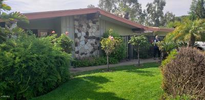 Camarillo Single Family Home For Sale: 1820 Ramona Drive