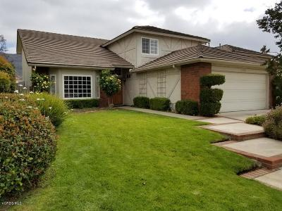 Agoura Hills Single Family Home For Sale: 5542 Adelina Court