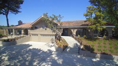 Camarillo Single Family Home For Sale: 11171 Presilla Road