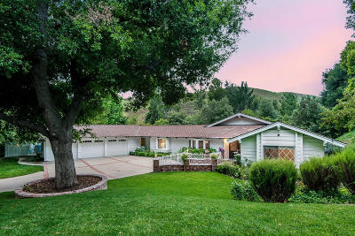 Westlake Village Single Family Home For Sale: 4011 Skelton Canyon Circle