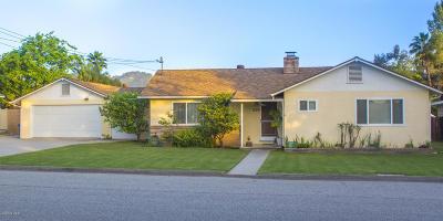Oak View Single Family Home For Sale: 175 Alto Drive