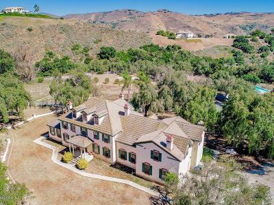 Camarillo Single Family Home For Sale: 2884 Redondo Avenue