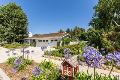 Simi Valley Single Family Home For Sale: 290 Granite Street