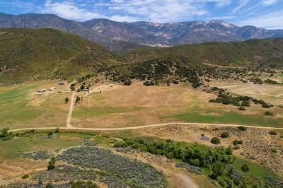 Ventura County Residential Lots & Land For Sale: 7343 Rose Valley Road