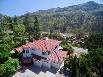 Agoura Hills Single Family Home For Sale: 29934 Triunfo Drive