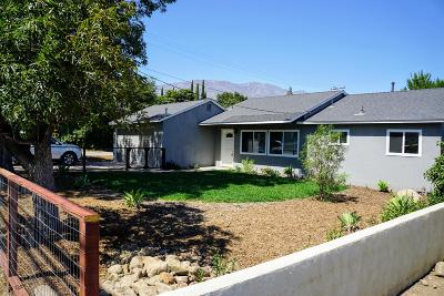 Santa Paula Single Family Home For Sale: 1405 Ojai Road