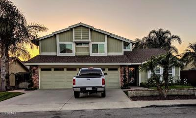 Camarillo Single Family Home For Sale: 363 Bent Twig Avenue