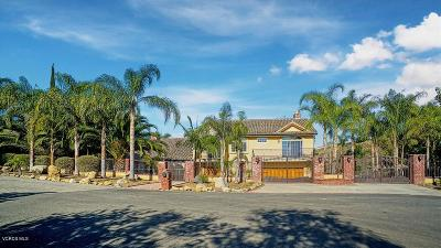 Camarillo Single Family Home For Sale: 3142 Subida