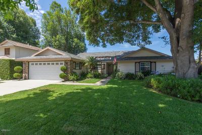 Newbury Park Single Family Home For Sale: 207 Hiram Avenue
