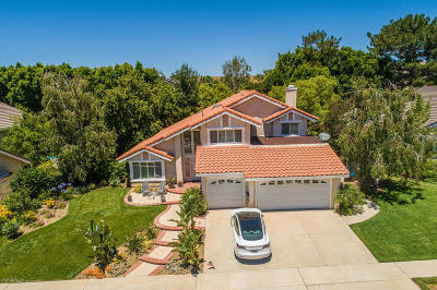 Simi Valley Single Family Home For Sale: 3143 Flanagan Drive