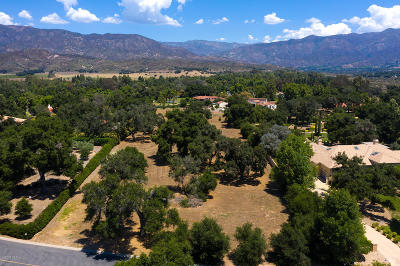 Ojai Residential Lots & Land For Sale: Oak Grove Court